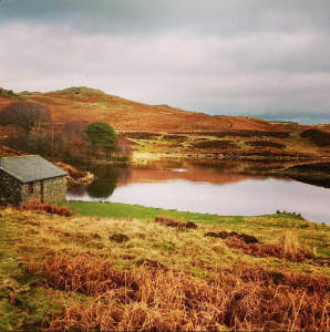 Potters Tarn, Staveley